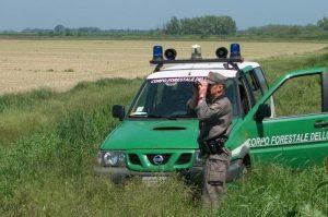 entrare nella guardia forestale