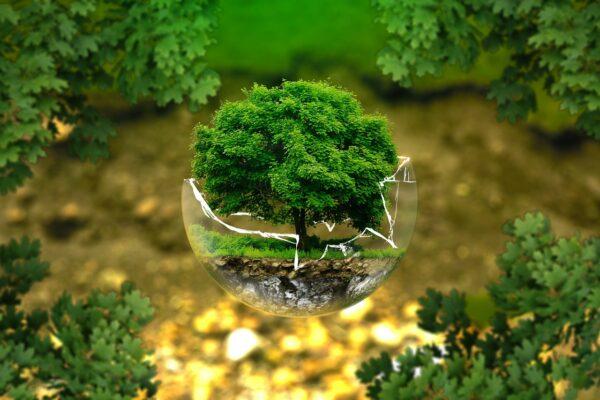 corso Valutazione Impatto Ambientale e Valutazione Ambientale Strategica