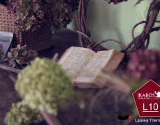 Laurea Triennale Online in Letteratura, Arte, Musica e Spettacolo – Indirizzo Letterario (LAMS) L10 – Valutazione CFU