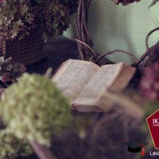 Laurea Online LAMS Indirizzo Letterario L10