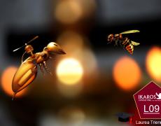Laurea Triennale Online in Ingegneria Informatica e dell'Automazione Indirizzo Droni L8 – Valutazione CFU