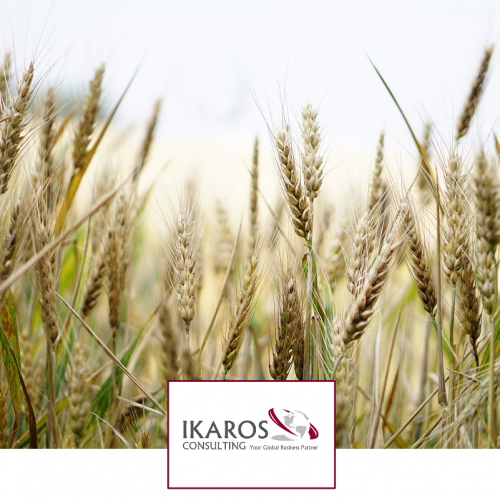 Corso di Contabilità Aziendale per Aziende Agricole